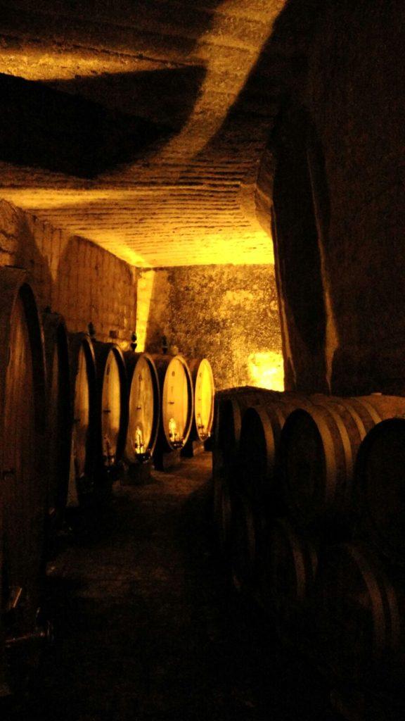 parma leuca puglia andria cantina vinicola conte spagnoletti