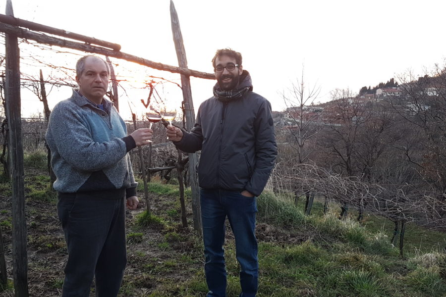 Andrej Bole: vino triestino da 200 anni