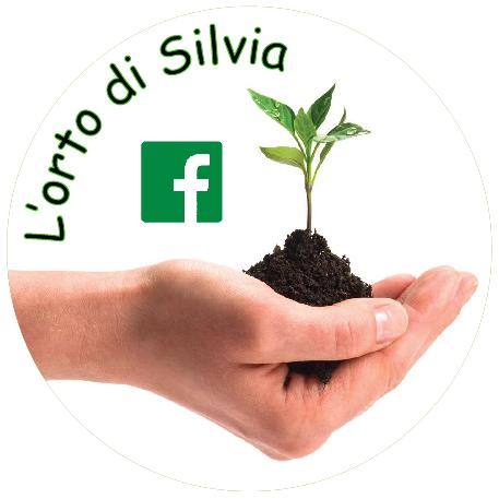 Logo l'orto di Silvia
