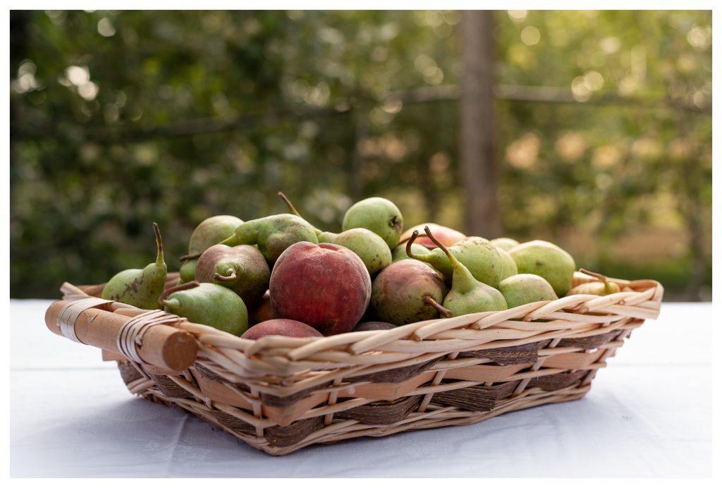 Cesco con frutta di stagione
